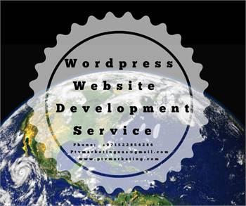 Wordpress Website Designing Service at low Cost