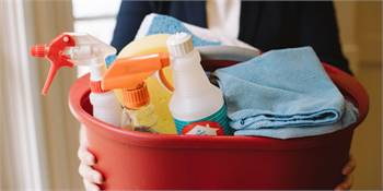 Book Domestic Cleaner in your House in Bonney Lake