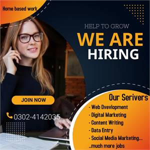 Online/Offline Jobs Consultancy Organization