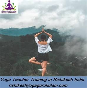 Hatha Yoga Teacher Training Best Yoga Teacher Training in Rishikesh