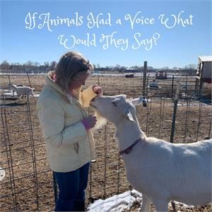 Animal communication, animal whisperer, pet psychic, pet medium - serving clients globally