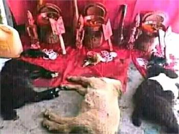 I WANT TO JOIN OCCULT FOR MONEY RITUAL..&+2349022657119.