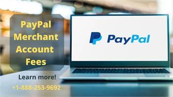 PayPal Merchant Account Fees