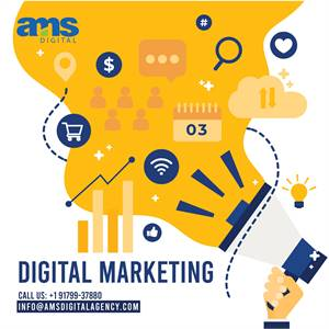 Digital Marketing Agency in California | AMS Digital Agency