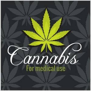 Buy White Runtz Weed Online | Buy Marijuana Online at https://whiteruntz.co/