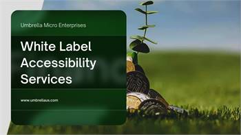 Best in Class White Label Website Accessibility Services-Umbrella