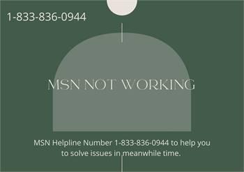 Toll Free MSN Helpline Number Provides Best Customer Support