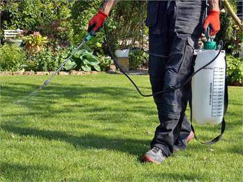 Specialist And Well-Trained Team Pest Control in Sarasota.