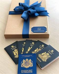 Buy UK international passport for sale online / Buy United State state driver's license online