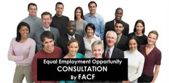 Executive Order 11246 affirmative action consulting support services