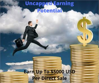 Seeking Motivated Sales Reps - Global Online Business Opportunity