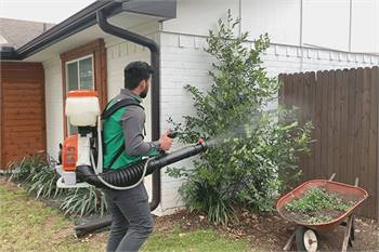 Affordable and Effective Mosquito control services in Bradenton