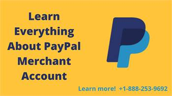 Know PayPal Merchant Account in Brief
