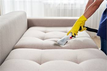 Sofa & Upholstery Cleaning Annandale