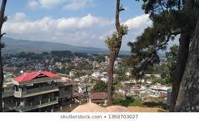 SHIMLA HILLS WITH LESS PRICE TOUR PACKAGE WITH FAMILY
