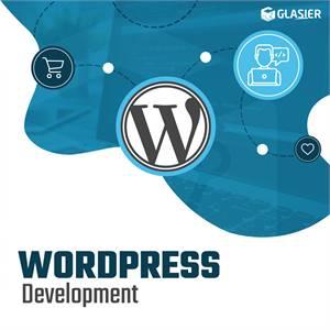 WordPress Development Services Company India   WordPress Plugin Development