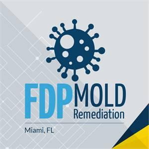 Mold Remediation Services in Miami, FL