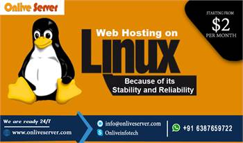 Best Linux Web Hosting Experience with Onlive Server