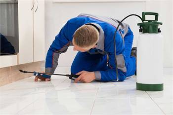 Pest Control Indoor And Outdoor in Lakewood Ranch.