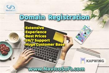 Domain Registration, Web Hosting Company