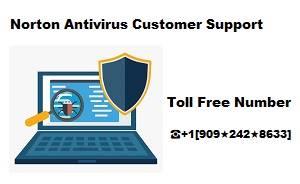 Norton Antivirus Customer Support Number +1[909★242★8633]