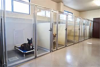 Pet Boarding services in Tacoma, WA