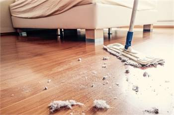 Cleaning Services In Thrissur | Professional Cleaning Services