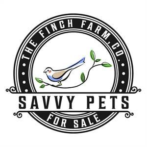 !!!The Finch Farm - Wide Range Of Birds For Sale!!!