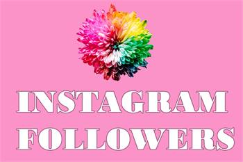 Buy Instagram Followers Italy