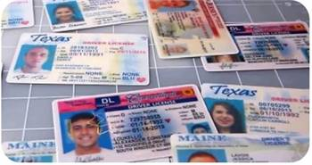 Buy Genuine drivers license
