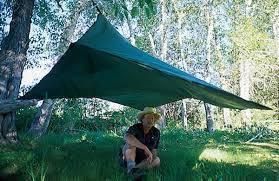 Heavy-Duty Tarps - Canopies And Tarps For Sale
