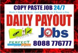 Data Entry   ways to make money   work at home jobs   1034  