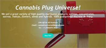 Welcome to Cannabis Plug Universe!