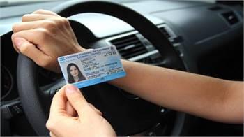 We Process & Produce both Real & Fake Driver's License.