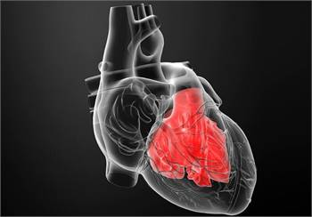 Enlarged Heart: Medications & Treatment